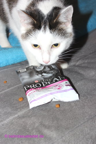 fuer_sie_trendsetter_purina_proplan_delicate_15