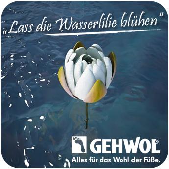 gehwol_aktion-wasserlilie