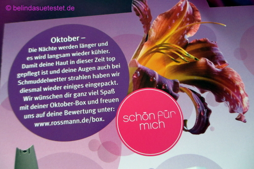 rossmann_sfm_box_oktober14_22